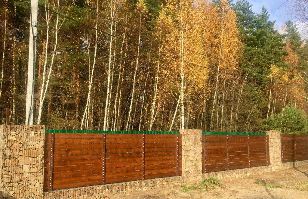 Забор, покрашенный Белинкой Топлазурь